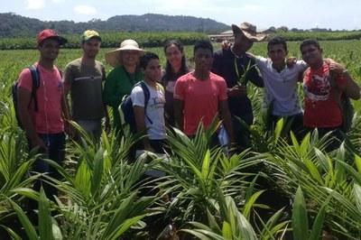 Alunos do curso de Alternância durante visita técnica em área de cultivo de Dendê no município de Baliza (2014)
